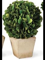Boxwood Topiary Mini - Ball Single (Square Pot)