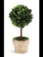 Mini Boxwood Topiary - Small Single Ball Tree (Round Pot)