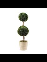 """Boxwood Topiary - Double Ball Tree 28"""""""