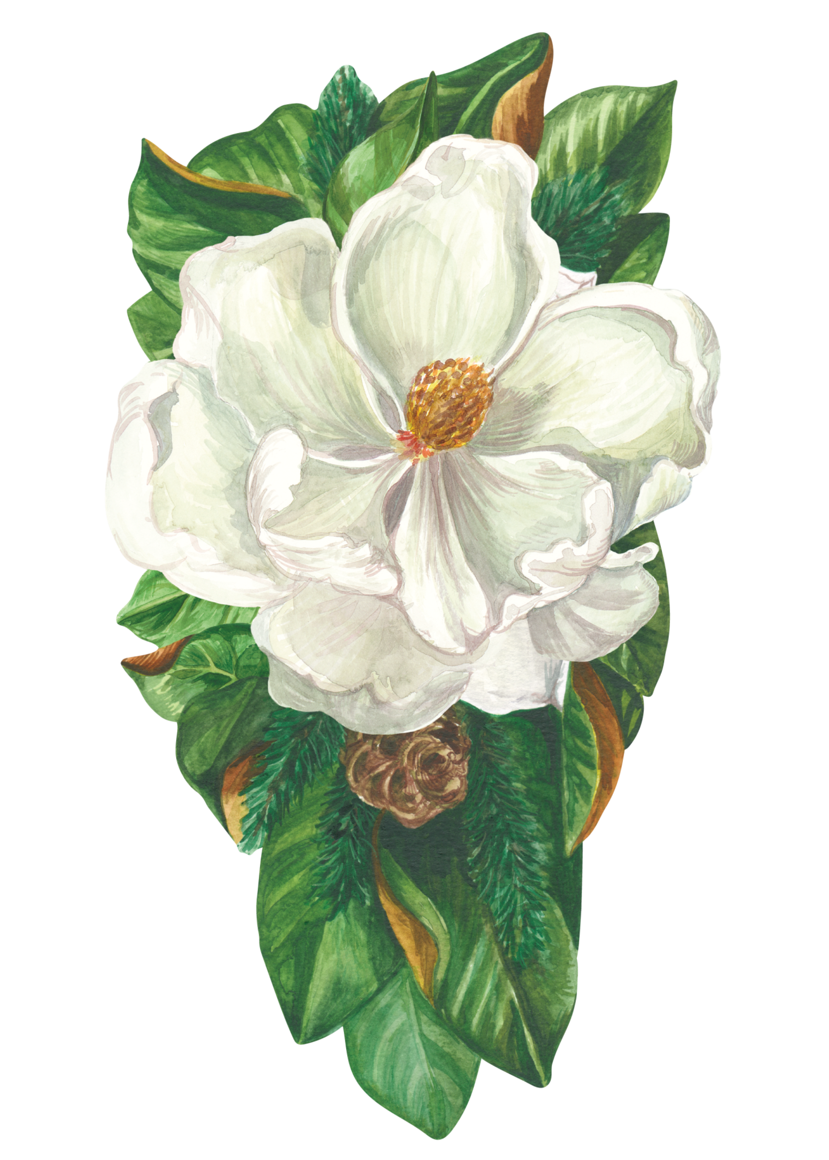 Hester & Cook Table Accents - Magnolia (pack of 12)