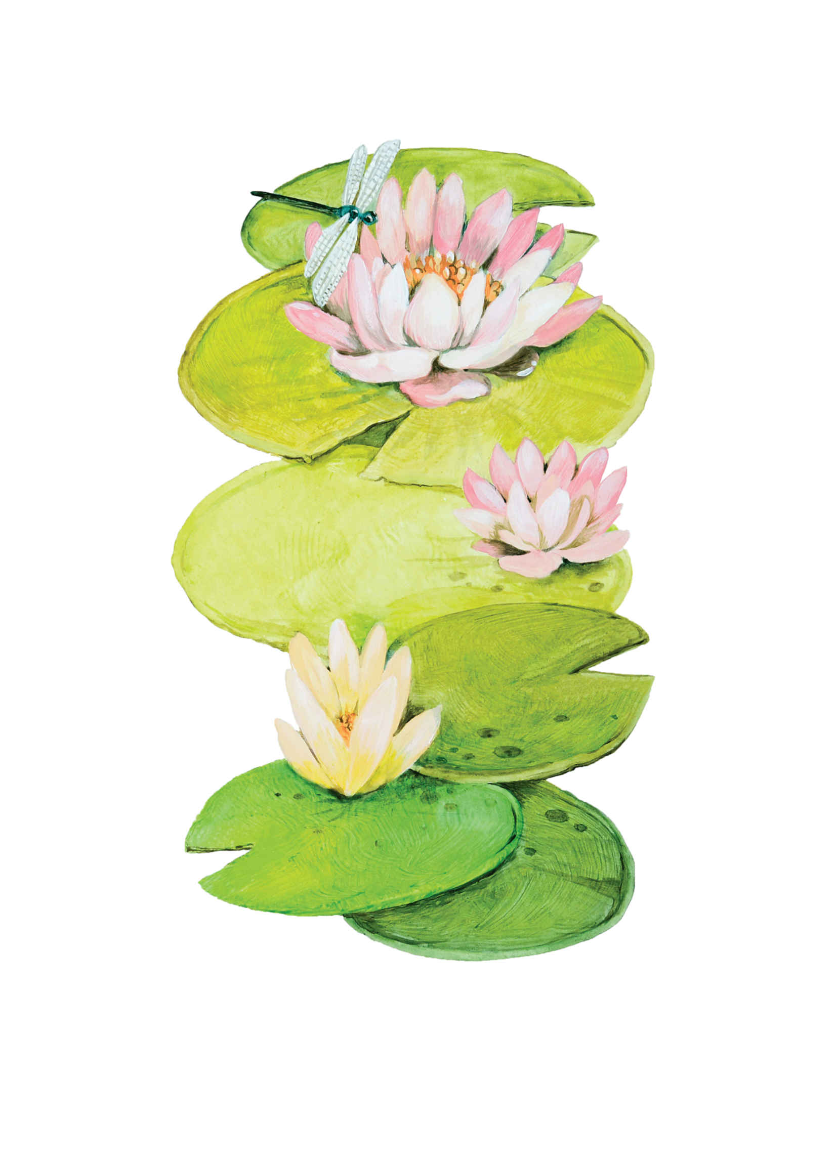 Hester & Cook Table Accents - Lilypad (pack of 12)