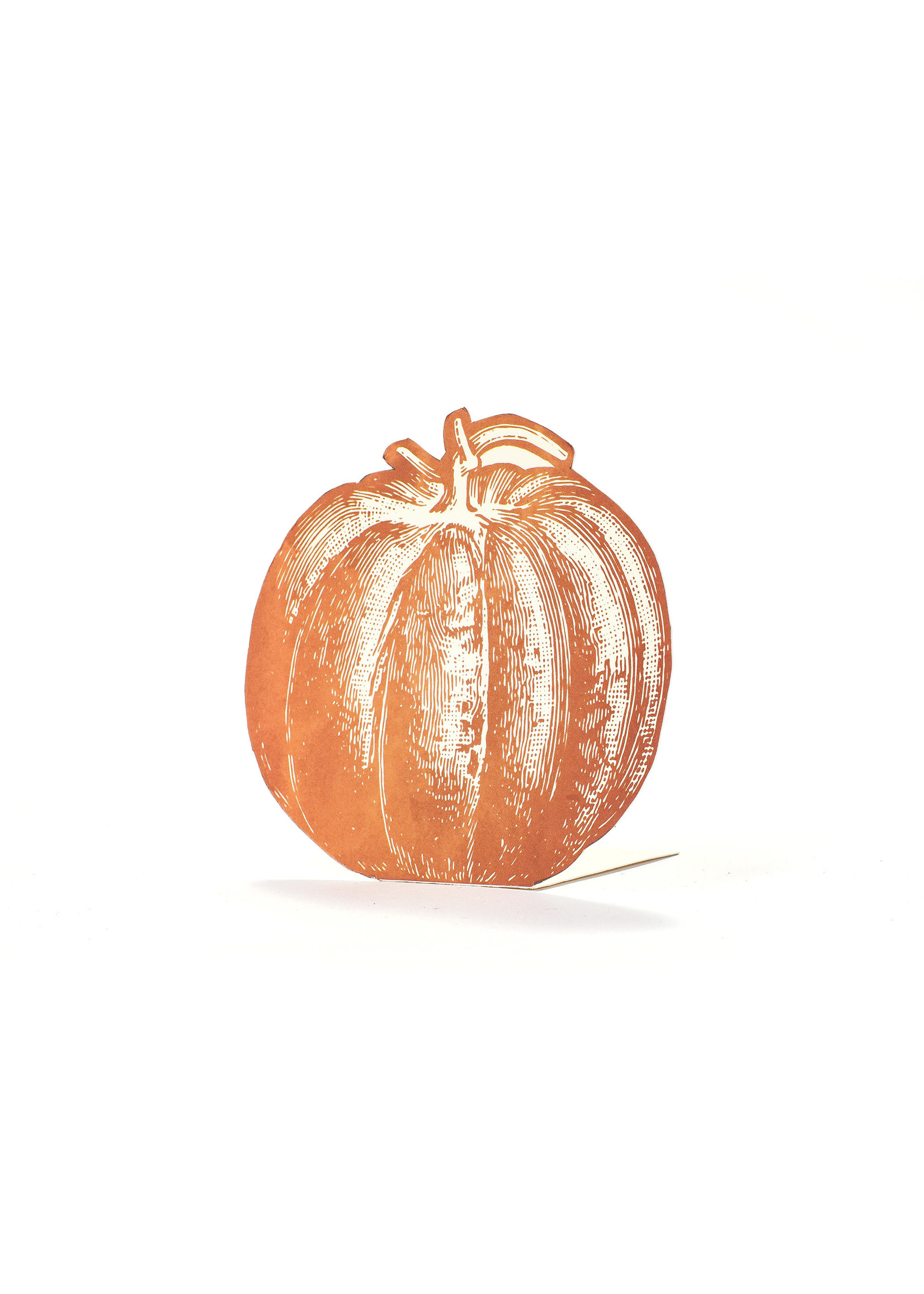 Hester & Cook Place Cards - Pumpkin (pack of 12)