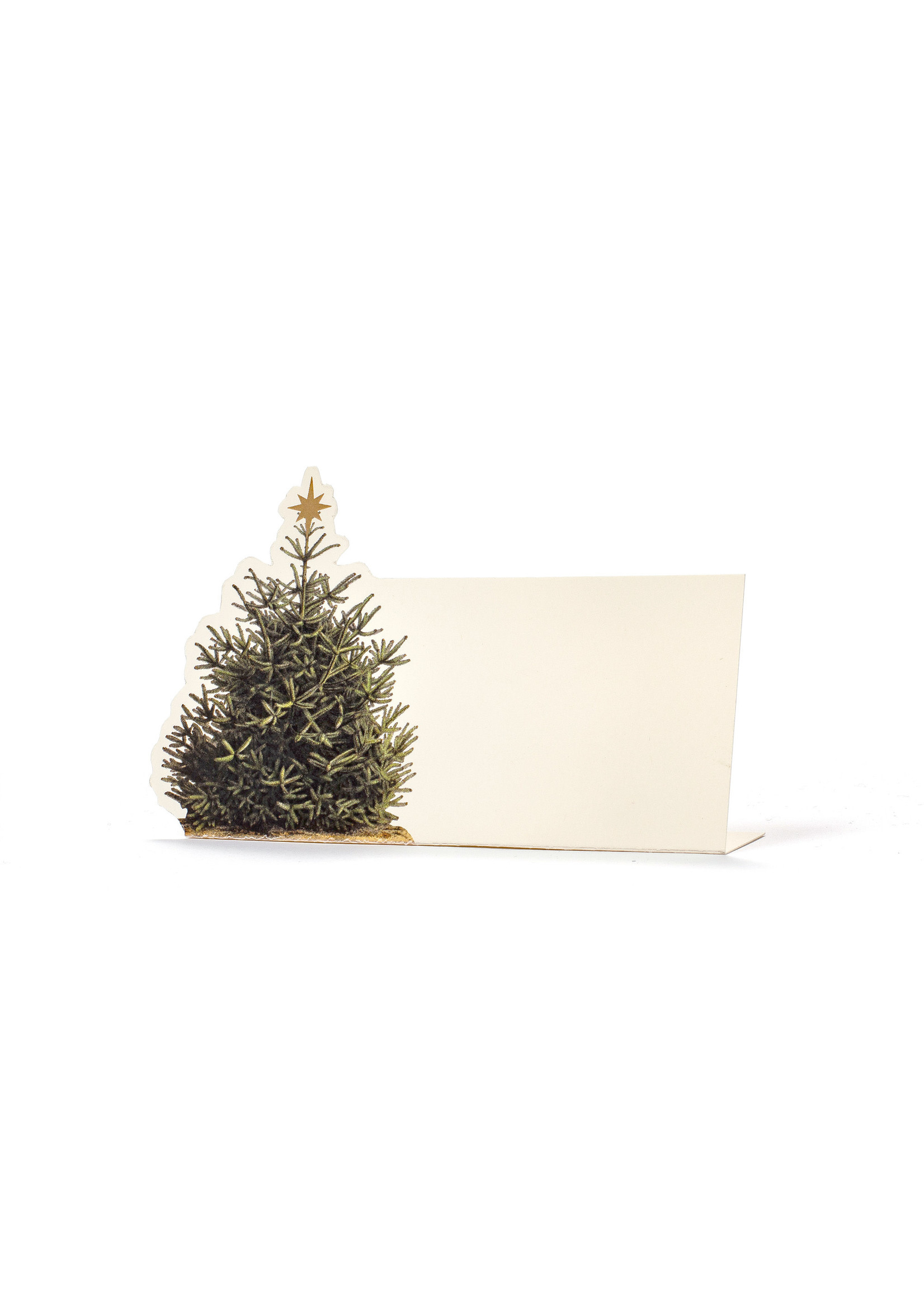 Hester & Cook Place Cards - Christmas Tree (pack of 12)