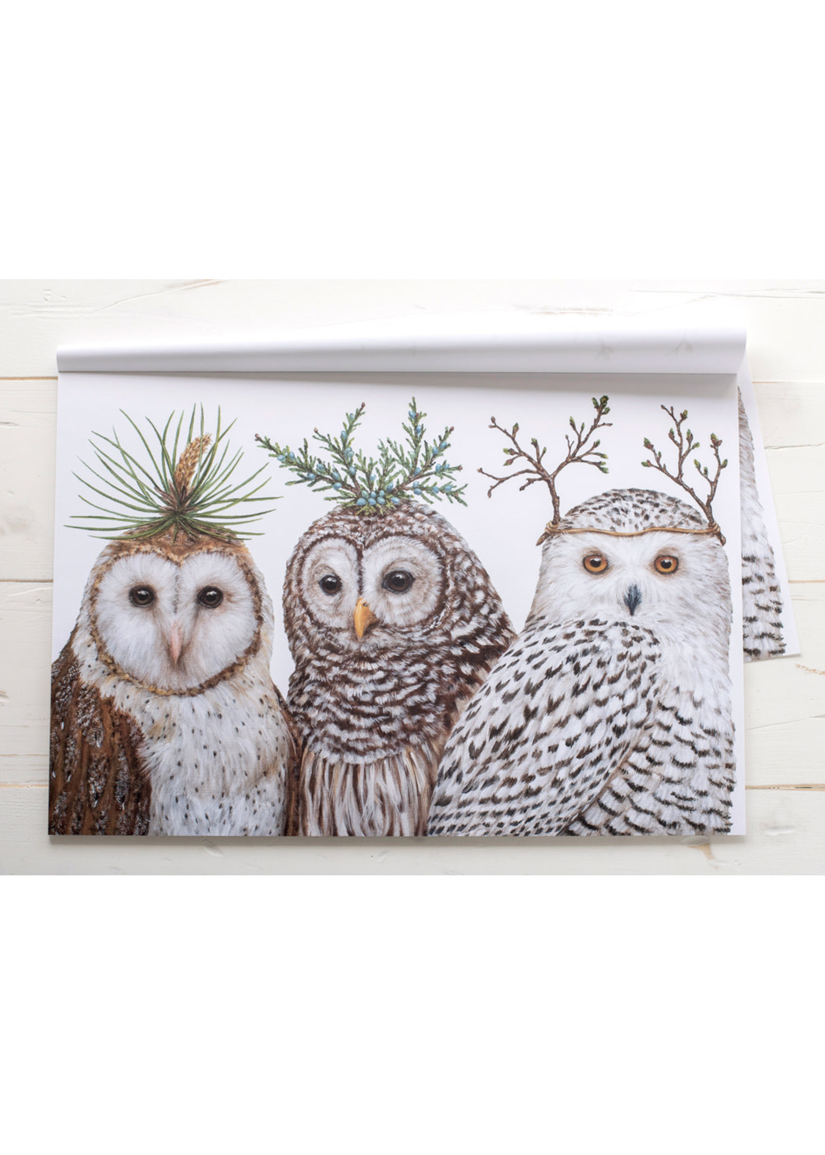 Hester & Cook Paper Placemats - Winter Owls (24 sheets)