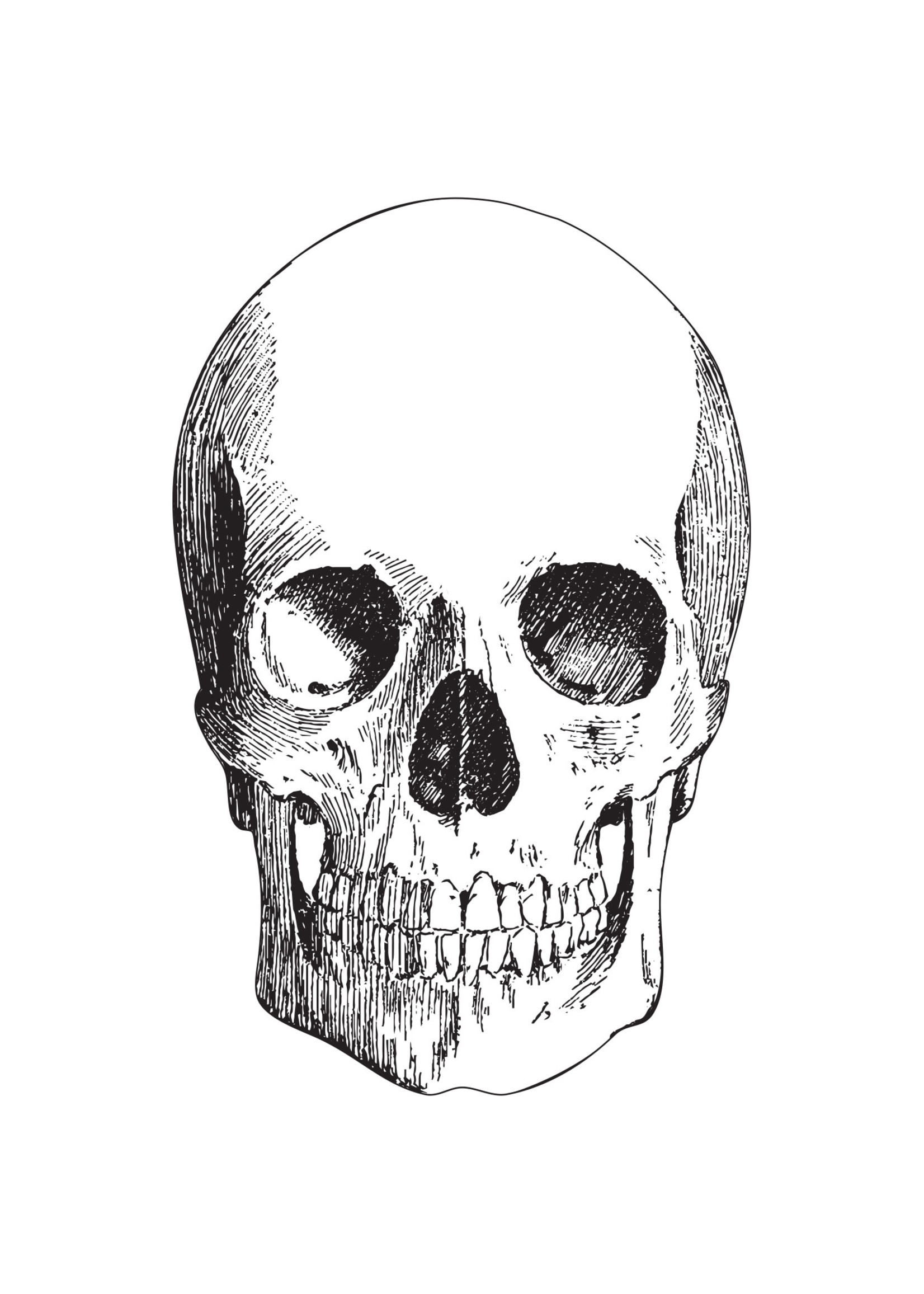 Hester & Cook Paper Placemats - Skull (12 sheets)