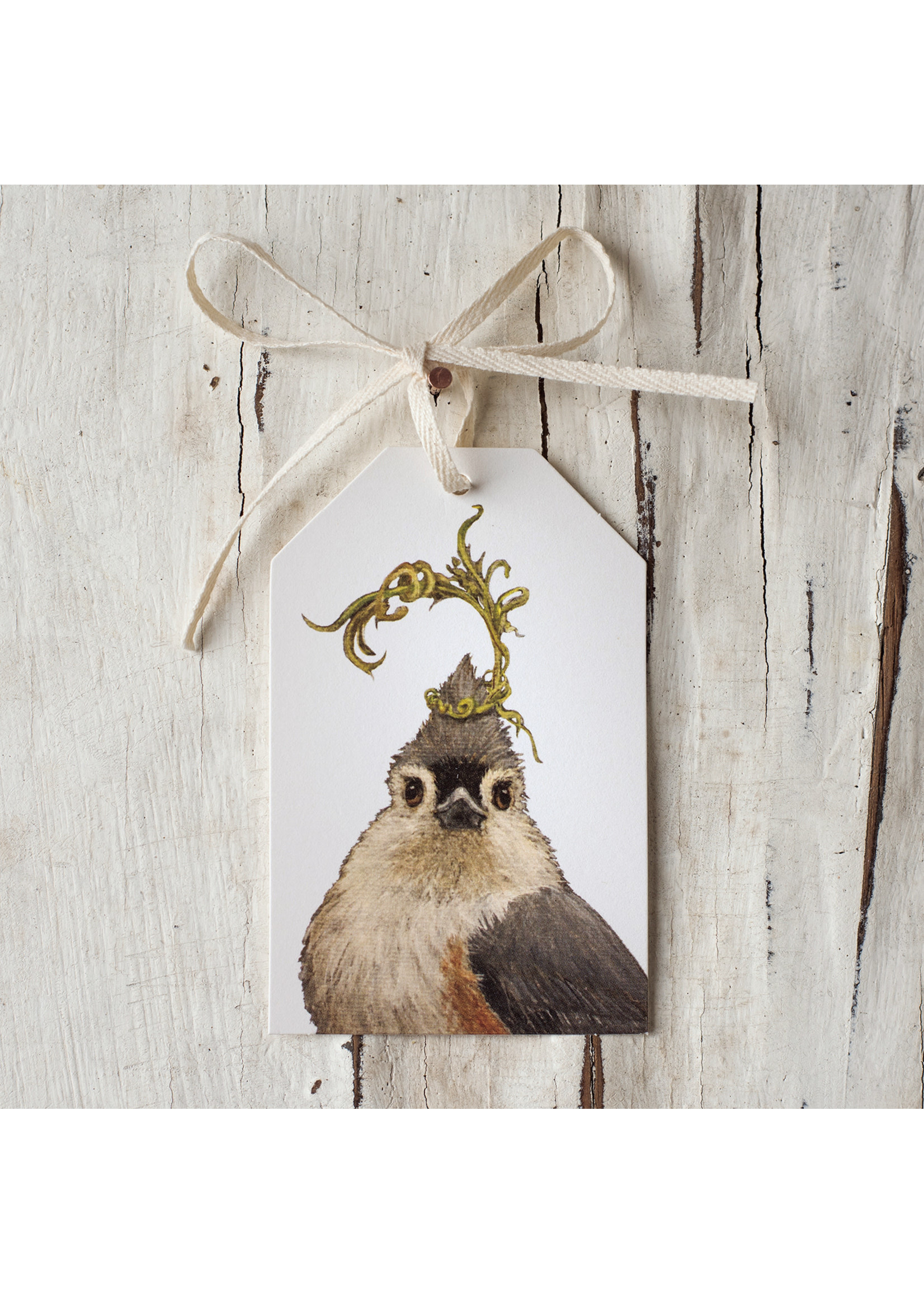 Hester & Cook Gift Tags - Songbird (Pack of 12)