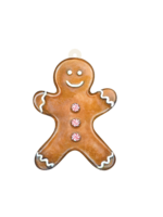 Hester & Cook Gift Tags - Gingerbread Man (pack of 12)