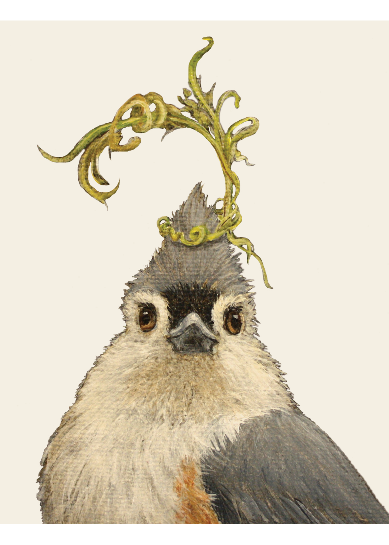 Hester & Cook Card - Audrey Tufted Titmouse
