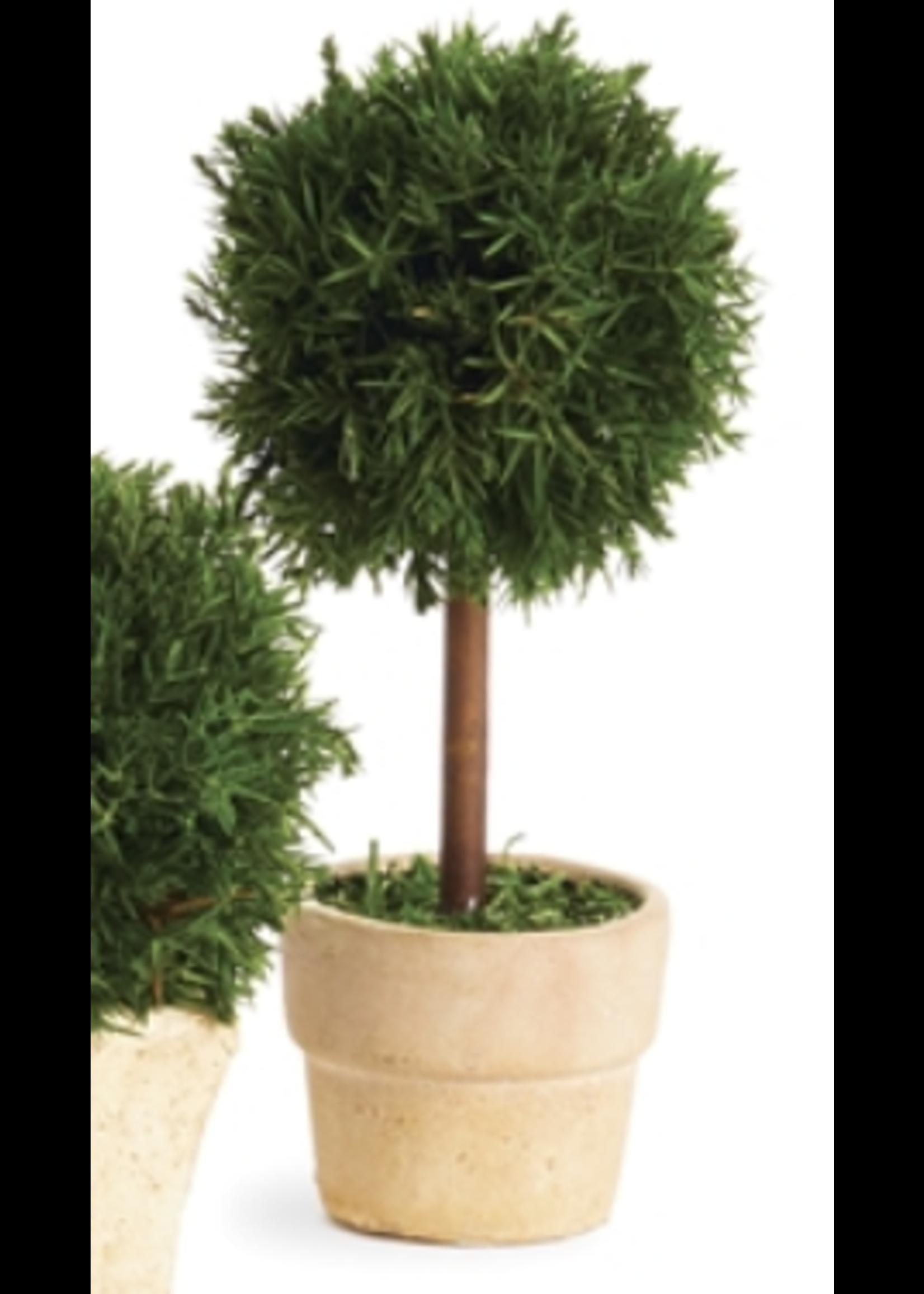 Cypress Topiary Mini - Tree Single (Round Pot)