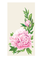 Hester & Cook Paper Guest Napkins - Peony (pack of 16)