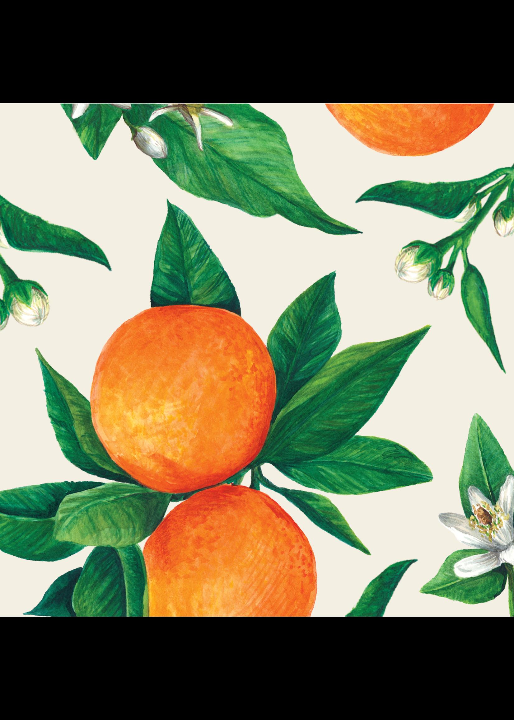 Hester & Cook Paper Cocktail Napkins - Orange Orchard (pack of 20)