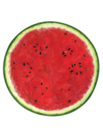 Hester & Cook Paper Placemats - Watermelon (12 sheets)