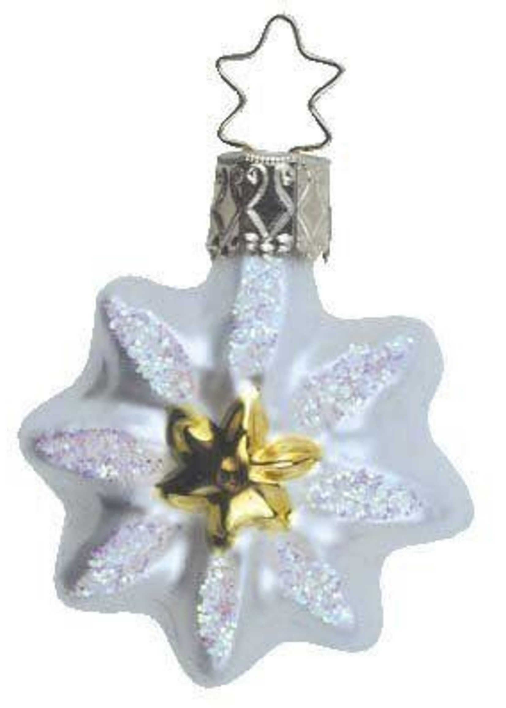 Ornament - Edelweiss Stern