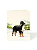 Felix Doolittle Card - Bernese Mountain Dog