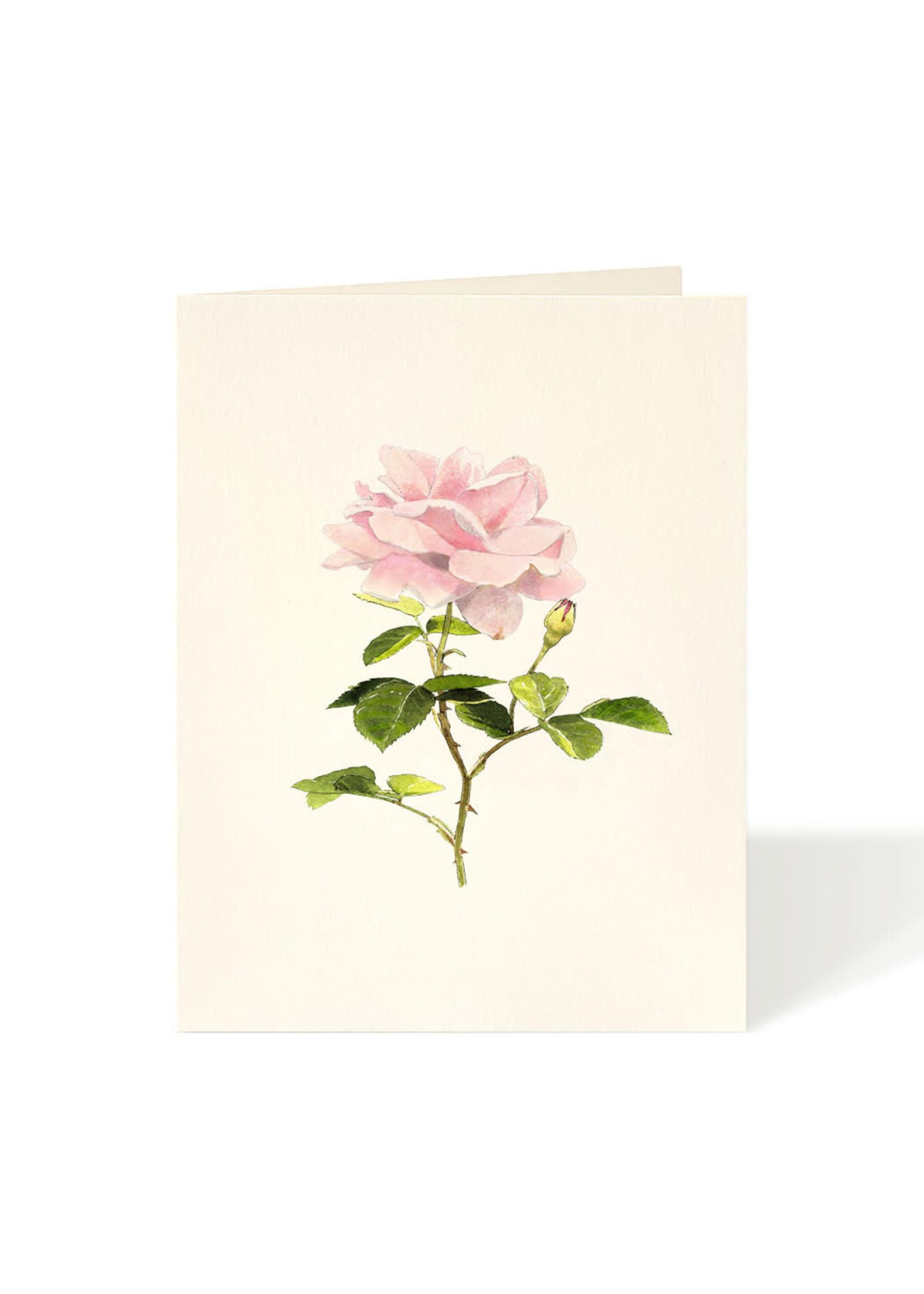 Card - Cottage Rose