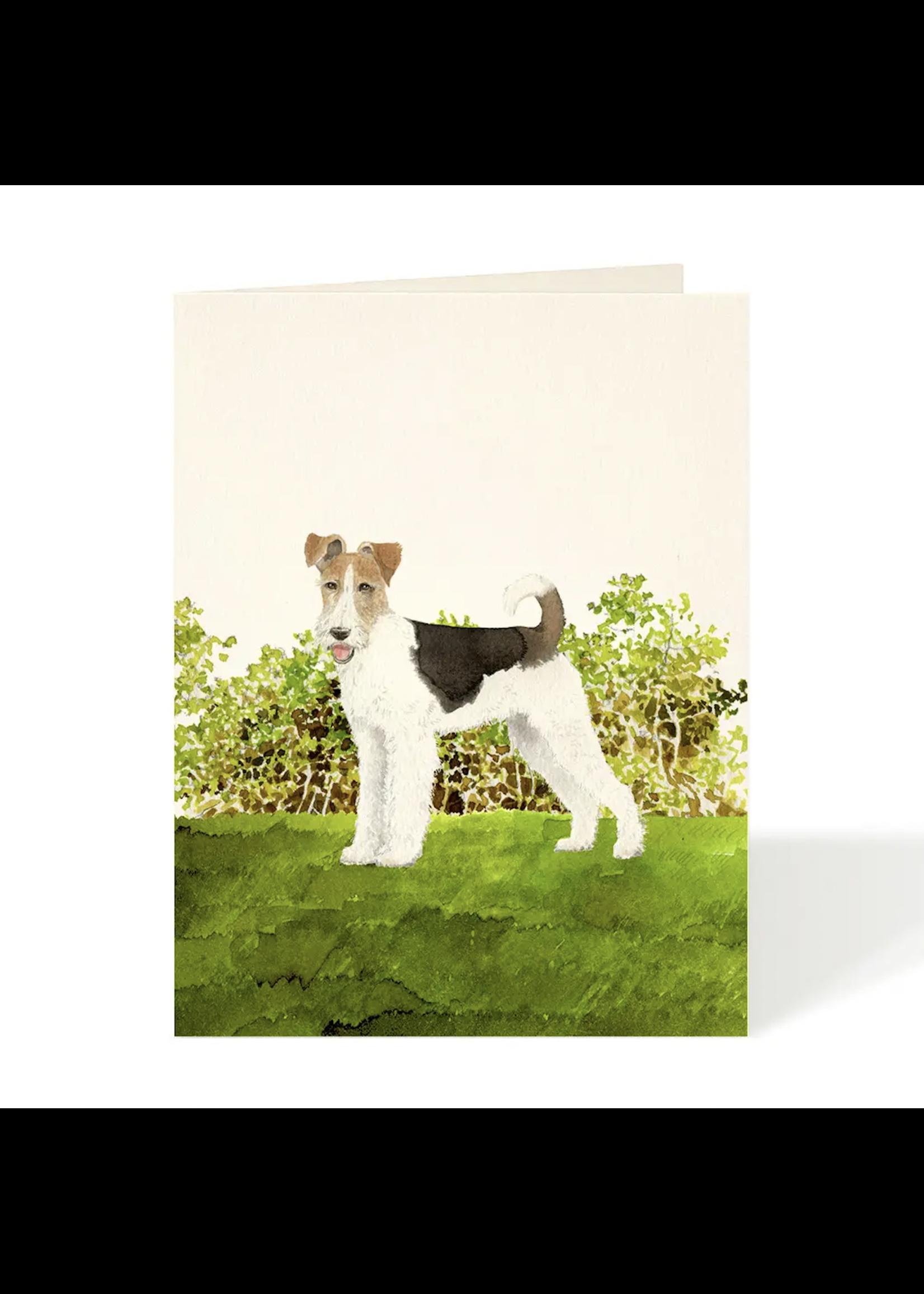 Card - Fox Terrier
