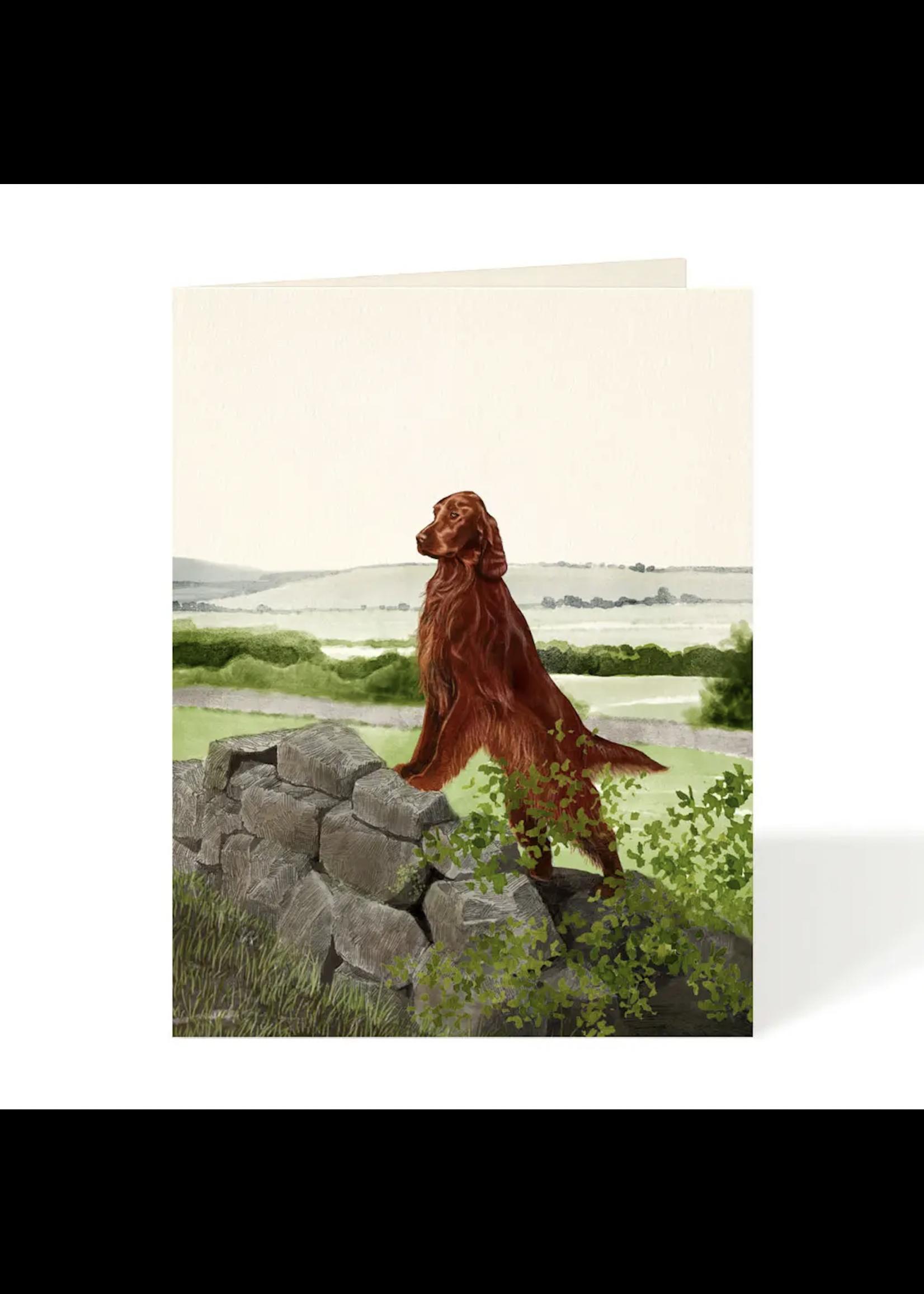 Felix Doolittle Card - Irish Setter