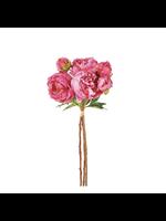 Peony Bundle Pink (3)
