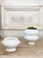 Vintage Lion Bowls from France