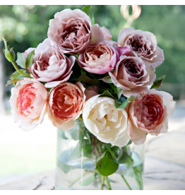 Pink Picasso Kit- Mail Me Roses