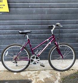 "Schwinn *Bikes-For-All* 19"" Schwinn Frontier"