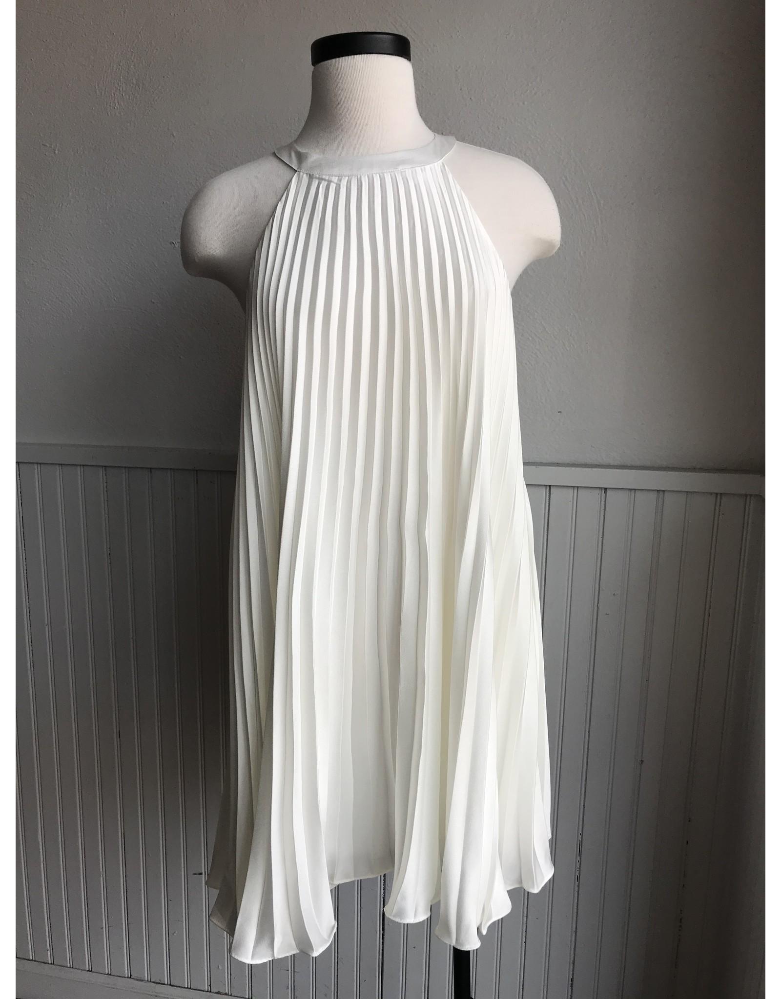 FIAMMETTA PLEATED DRESS
