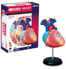 4D Master HEART ANATOMY 4-D