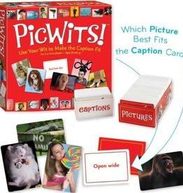 MindWare PicWits