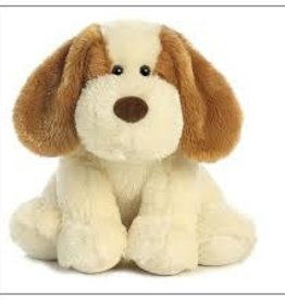 Aurora scruffy puppy