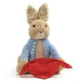 Gund Peter Rabbit Peek-a-Boo 10