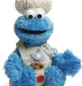 Sesame Street Everyday Teach Me Cookie Monster