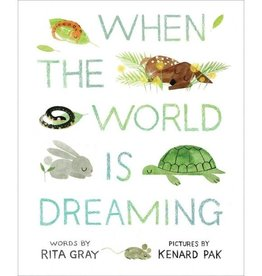HMH Books when the world is dreaming