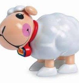 Tolo Lamb - (Loose)