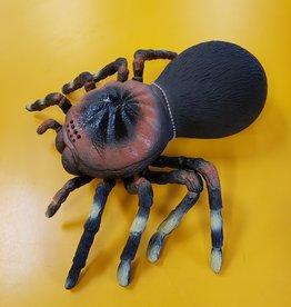 Imex Tarantula