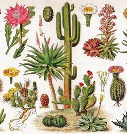 New York Puzzle Cacti - Cactus 1000 PCS