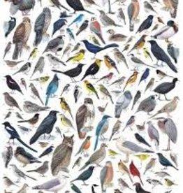 New York Puzzle Birds of Western North America 1000 pc