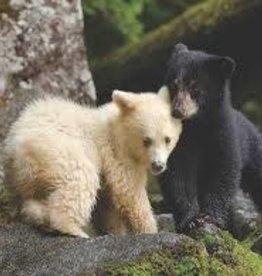 New York Puzzle Bear Buddies 1000 pc