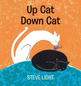 Candlewick Press Up Cat Down Cat by Steve Light