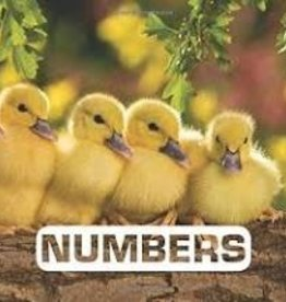HMH Books Numbers Book