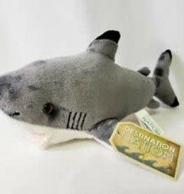 Aurora Shark