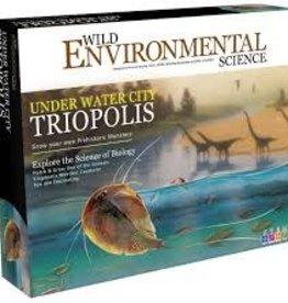 Learning Advantage Under Water Triopolis