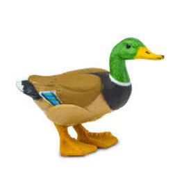 Safari Duck