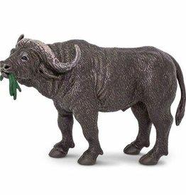 Safari Cape Buffalo