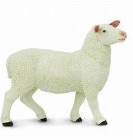 Safari Ltd Ewe