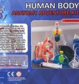 U Explorer Human Body Anatomy  Adventure Kit