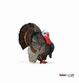 Safari Ltd Turkey