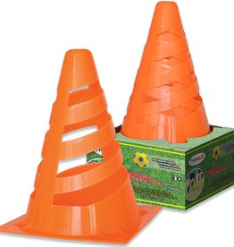 Thin Air Brands Anywhere Training Cones
