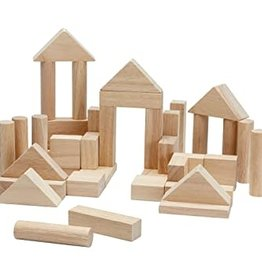 Plan Toys 40 Unit Blocks Natural