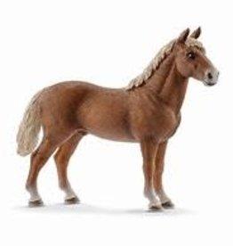 Schleich Morgan Horse Stallion