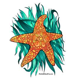 Alaska Wild and Free Orange Starfish Sticker